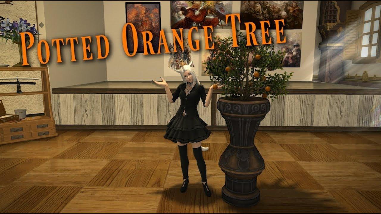 FFXIV: Potted Orange Tree - Housing Item