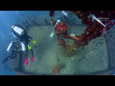 Dolphin 88 Wreck with Poni Divers, Brunei