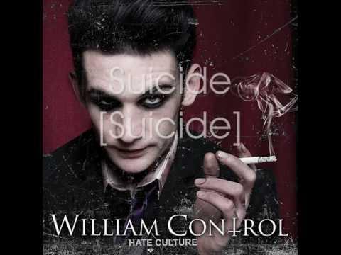 Beautiful Loser - William Control mp3