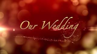 Free Wedding Background | Heart Pack 2  |  Graphics-Wedding Title Background  | motion graphics Pack