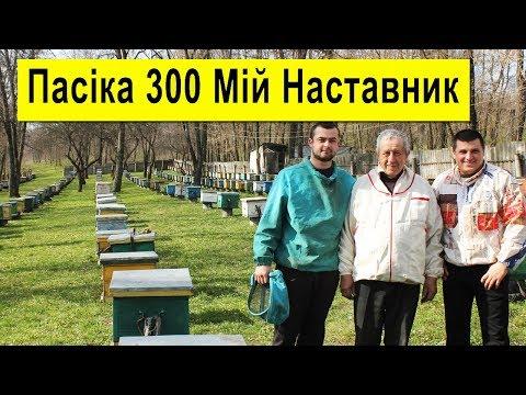 Пасіка 300 🐝 В Гостях У Повар Віталій Івановича ✅