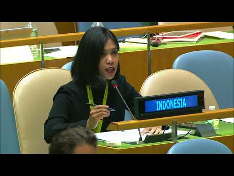 Indonesian government right to reply on West Papua issue at UN.