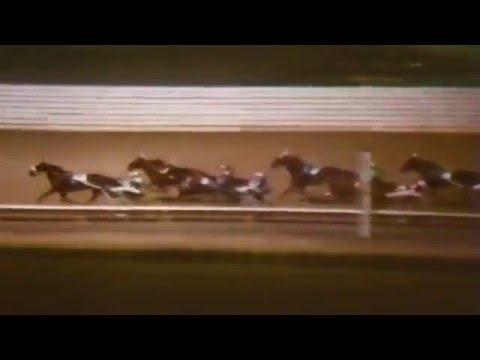 1981 Yonkers Raceway - Open Pace - Trenton Time