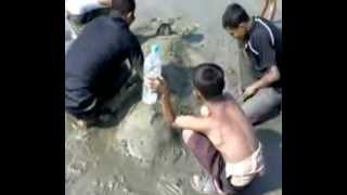 Repeat youtube video Having Fun At Cox's Bazar, Bangladesh