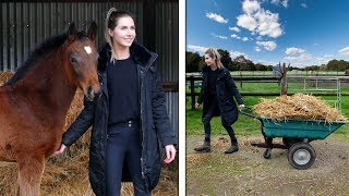 EQUESTRIAN MORNING ROUTINE (Foal edition!)