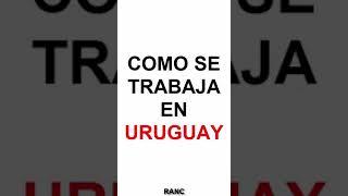 Gambar cover Como Se Trabaja En Uruguay Vs El Mundo Uruguay Es El Mejor País