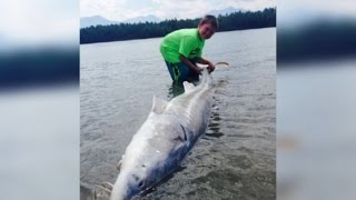 9-Year-Old Boy Catches a 600-Pound Monster Fish!