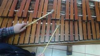 Linda Morena primera voz para marimba lettoband