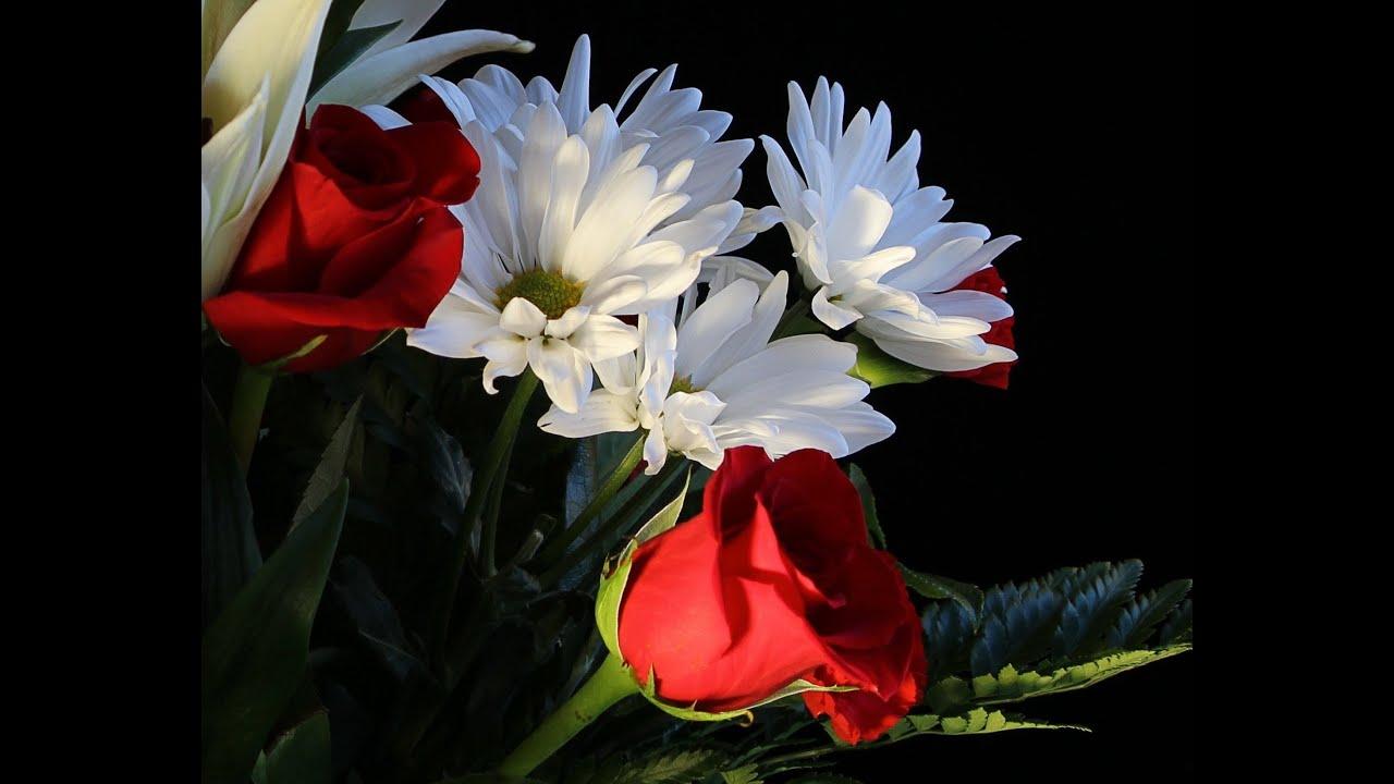 veronika névnap köszöntő Boldog Névnapot Veronika!   YouTube veronika névnap köszöntő