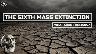 What Does The Sixth Mass Extinction Mean For Humans?