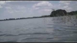 Parsteiner See-Unterwasseraufnahmen