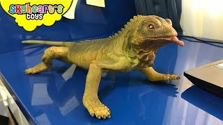 LIZARD INVASION on our house! Skyheart and Roboraptor hunts for lizard toys reptile gecko kids
