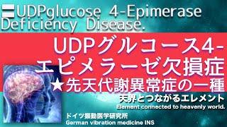 🔴ドイツ振動医学によるUDPグルコース4-エピメラーゼ欠損症編|UDPglucose 4-Epimerase Deficiency Disease.