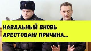 Навальный вновь арестован. Кто за этим стоит.