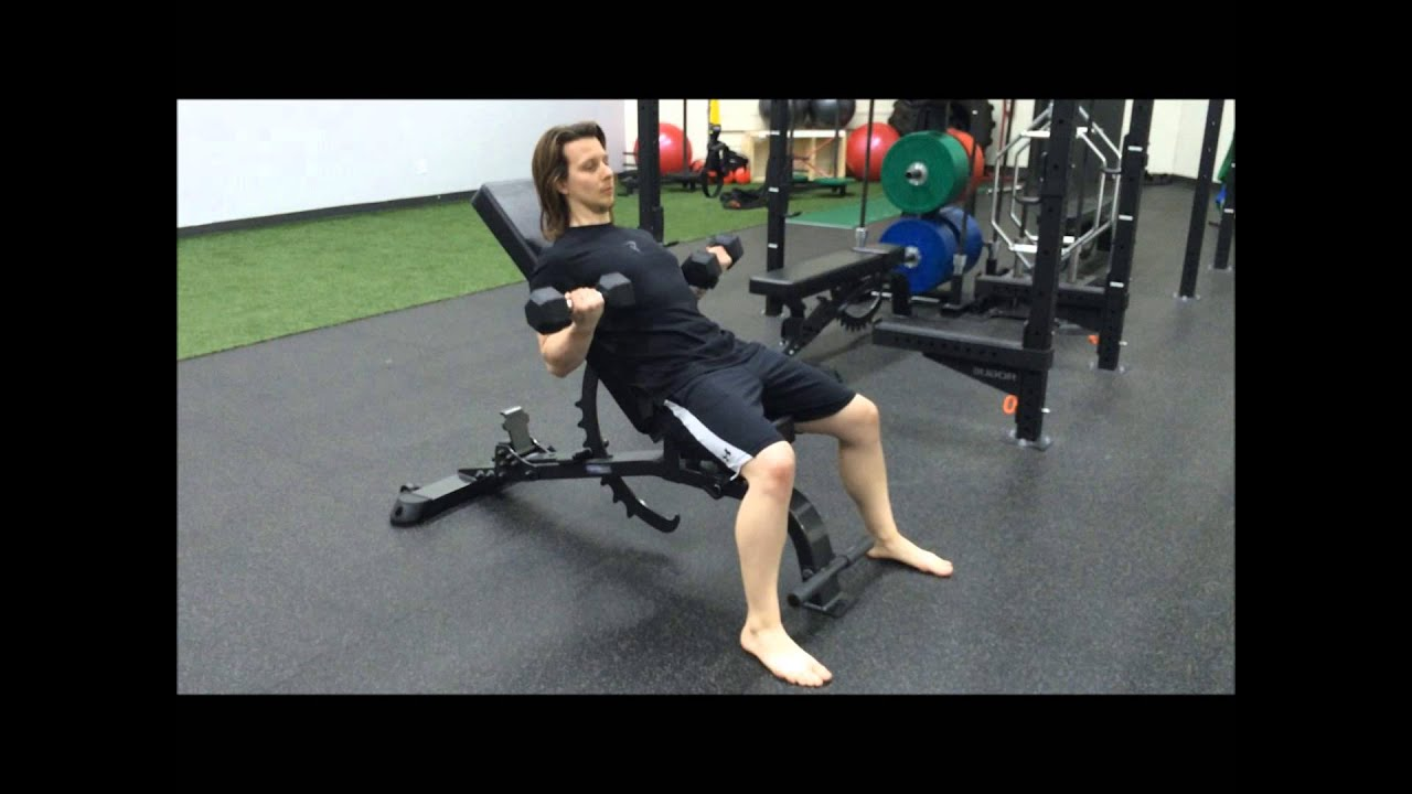 Spider Curls Incline Bench Part - 28: Incline Bench Dumbbell Bicep Curls