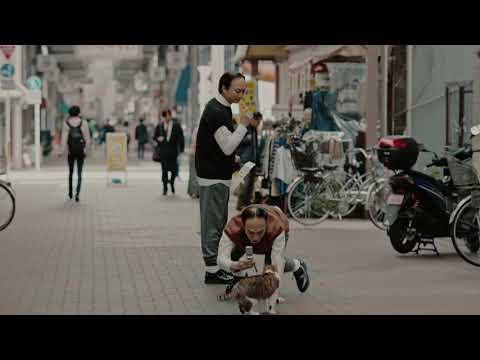 香取慎吾 メディカルミノキ5 CM スチル画像。CM動画を再生できます。