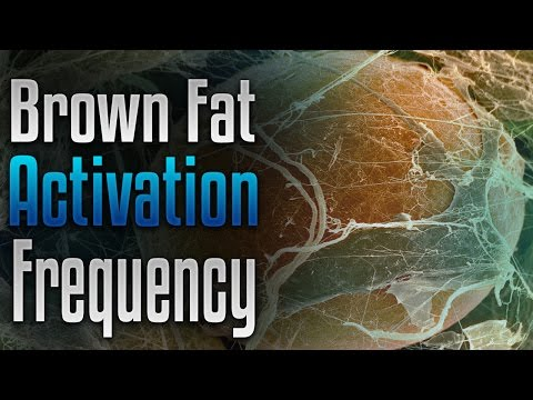 🎧 Brown Fat Activation Frequency Binaural, Rapid Healthy Weight Loss, Lose Weight Fast, Fat Burn