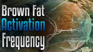 ???? Brown Fat Activation Frequency Binaural, Rapid Healthy Weight Loss, Lose Weight Fast, Fat Burn