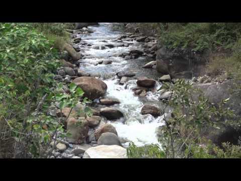 Hike in Ecuador, River Fun, Zoo and Raw Vegan BURGERS!!!