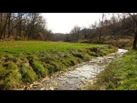 Hunting Land Kentucky Woods, River, Views, Old Barns, Stream, Wildlife, Hunters Paradise Farm Land