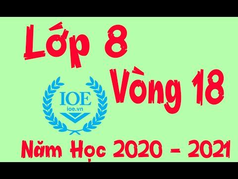 Đáp Án IOE Lớp 8 Vòng 18 Năm Học 2020 - 2021