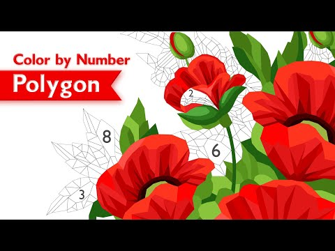POLYGON: Color by Number