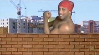 Рикардо Милос строит дома флексом