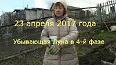 Мука Сокольническая - YouTube