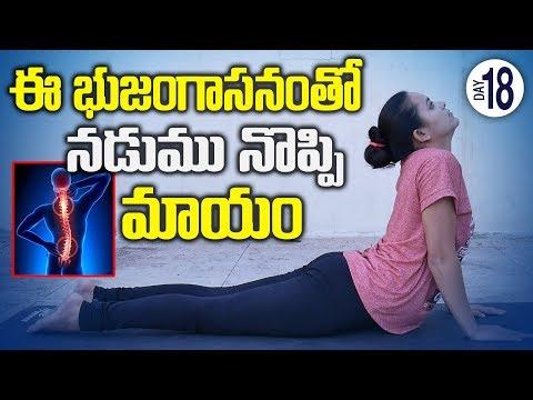 Yoga Asanas For Back Pain || 30 DAYS YOGA || SumanTV