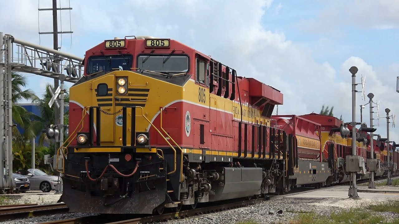 Trains on Every Railroad in South Florida! And RARE CN Engine - September  2018