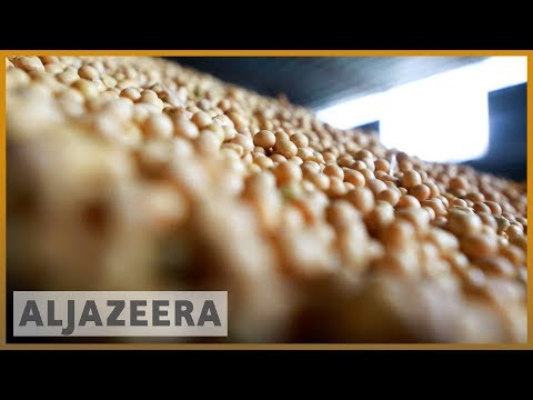 🇨🇳 🇺🇸 China-US trade war takes its toll on soybeans | Al Jazeera English