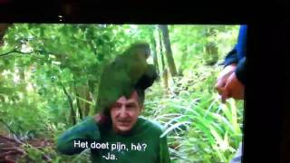Rare parrot f***in' a human