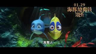 《海豚總動員》Magic Arch|01.29 守護海底 中/英文版同步開戰 (中文配音版)