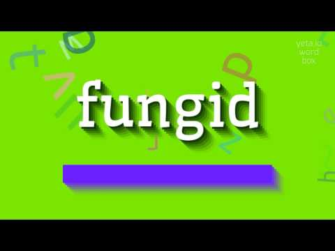 "How to say ""fungid""! (High Quality Voices)"