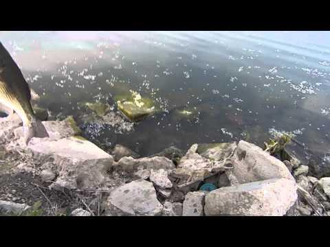 Bass fishing Four Lakes 15-6-3