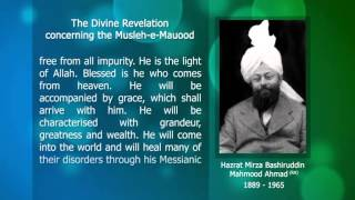 Prophecy Musleh-e-Mauood  (English)