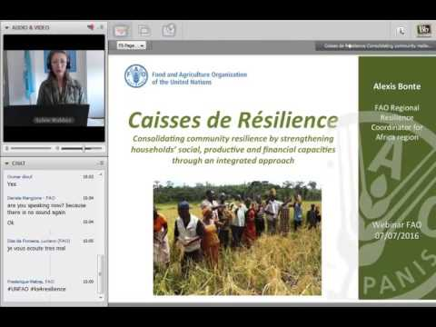FAO-Webinar-on- resilience #3-Caisses-de-Resilience-part1