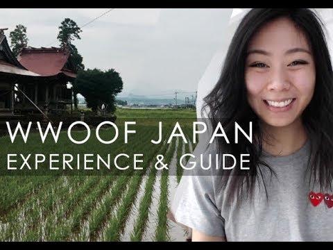 WWOOF Japan Experience + Tips