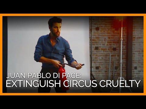Juan Pablo Di Pace: Extinguish Circus Cruelty