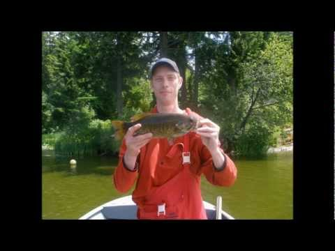 bass-fishing-vancouver-island