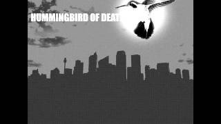 Hummingbird of death - Diagnosis: Delicious