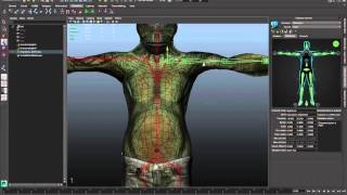 Skeleton Creation and Adjustment (Pt. 1) - Maya LT 2015 - Autodesk