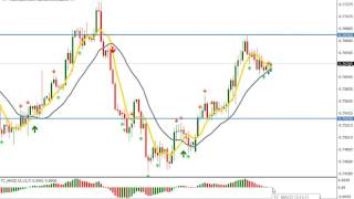 Forex trading - Binary option - Day Signals 1