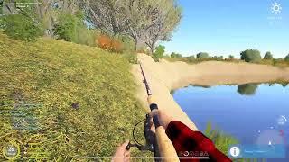 Русская Рыбалка 4 река ахтуба сом судак