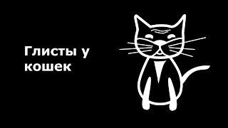 Глисты у кошек.