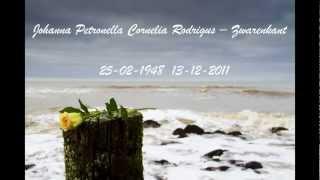 Joke 26 - 02 - 2012