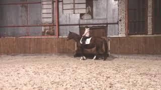 Валерия и Эй-Ха. Уроки верховой езды. Занятие на лошади. Конкур.