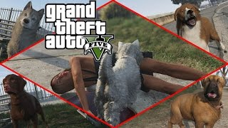 Grand Theft Auto V - Play as Cats & Dogs (Peyote) [1080p] TRUE-HD QUALITY