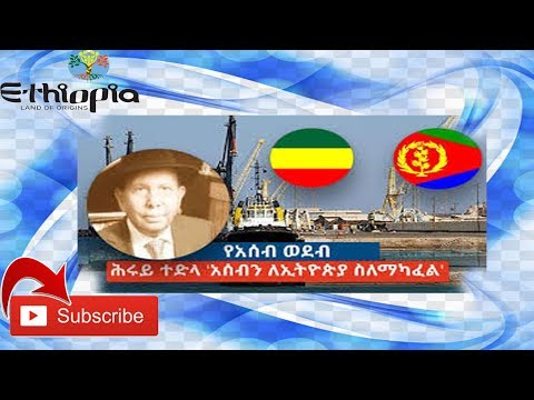Ato Herui Tedla on Ethiopia & Eritrea new case