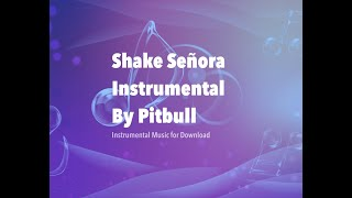 Shake Senora (INSTRUMENTAL) +DOWNLOAD Pitbull ft. Ludacris, T-Pain, & Sean Paul